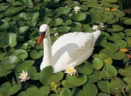 Cygne décoratif de bassin à poser