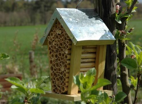 Abri pour abeilles
