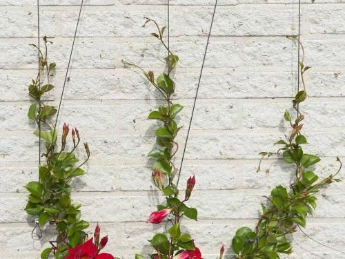 Porte plante support et tag re en m tal et fer forg for Porte plante fer forge blanc