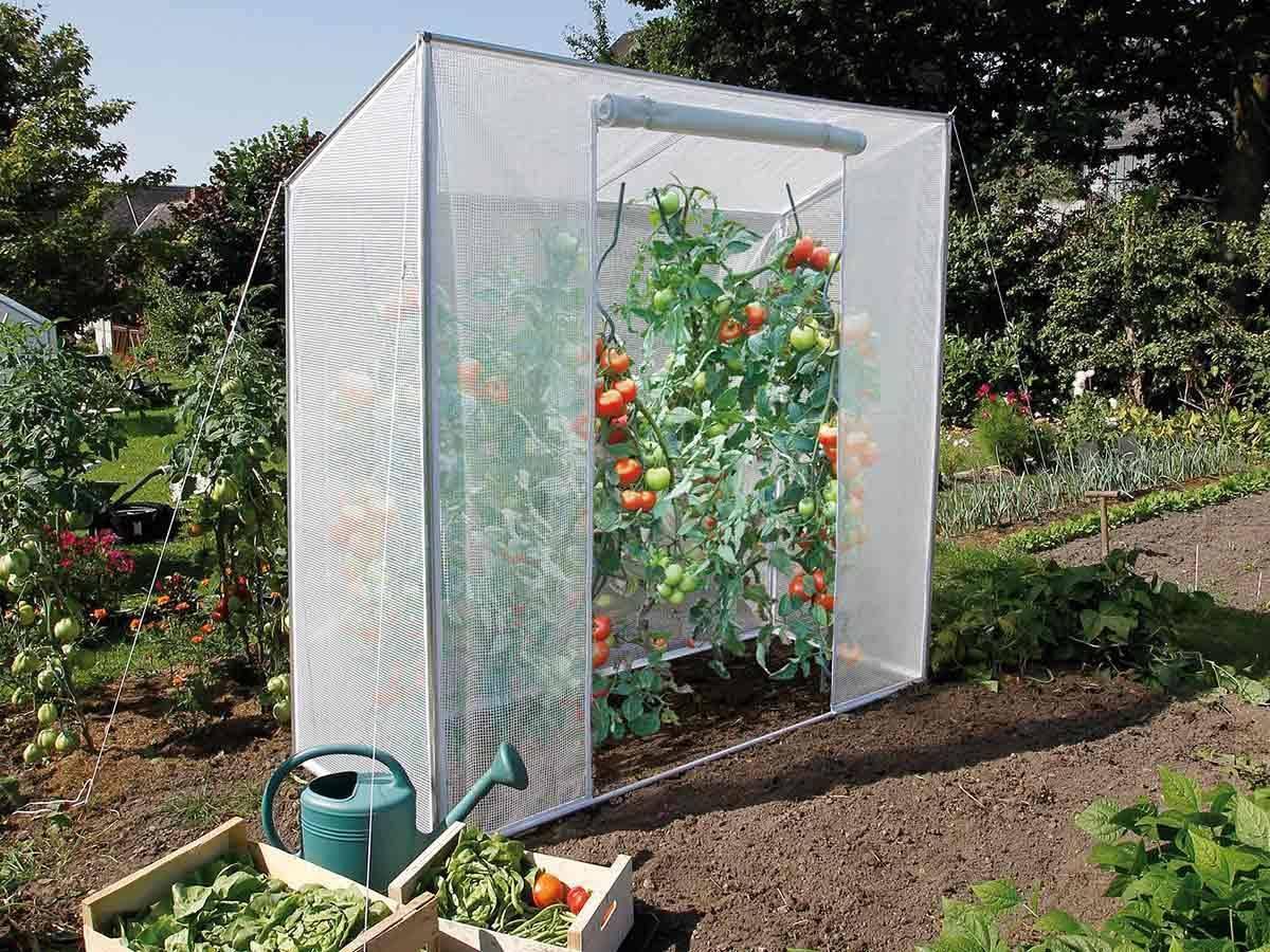 serre de jardin tomates 200 x 76 x 170 cm jardideco. Black Bedroom Furniture Sets. Home Design Ideas