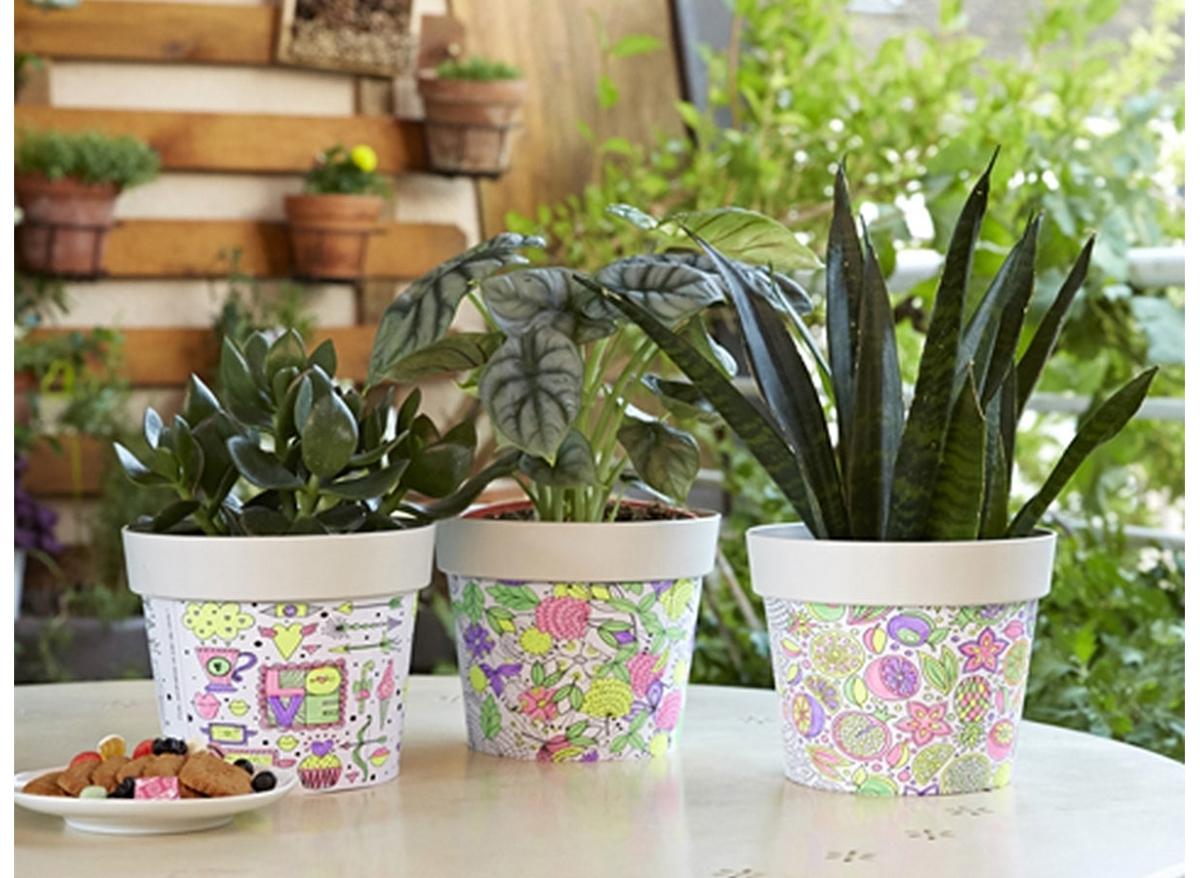 Coloriage Fleur Pot.Kit Pot De Fleur A Colorier 4 Feutres Poetic