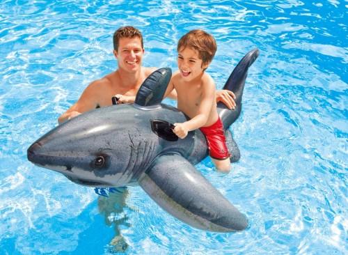 Requin blanc réaliste à chevaucher