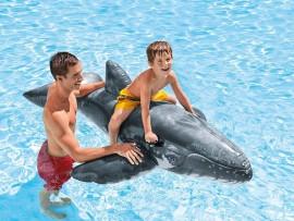 Baleine bleue réaliste à chevaucher