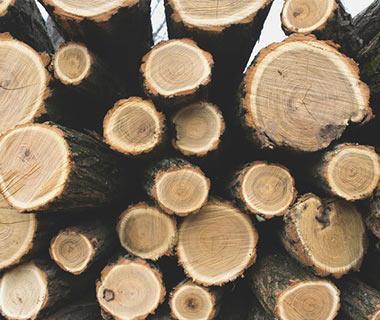 abris b ches pour stocker votre bois pas cher. Black Bedroom Furniture Sets. Home Design Ideas