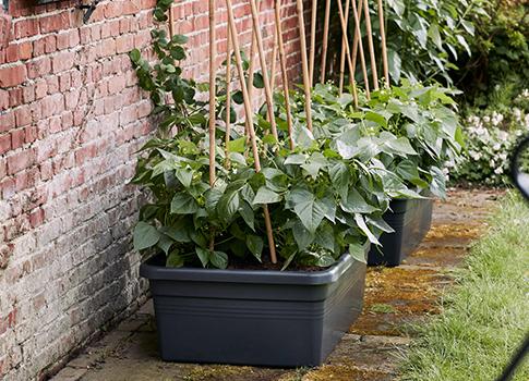 tout pour le jardinage la maison bac compost protection table. Black Bedroom Furniture Sets. Home Design Ideas