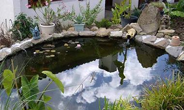 D coration de bassin pas cher - Decoration bassin de jardin ...