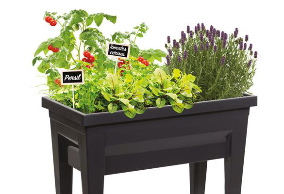 carr potager eda veg et table mod le city petit prix. Black Bedroom Furniture Sets. Home Design Ideas