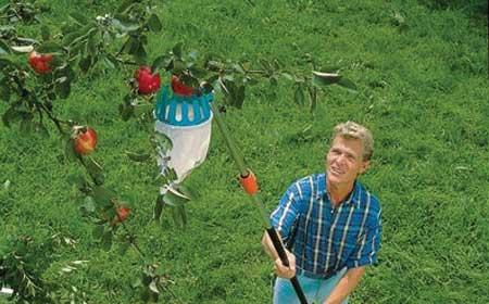 Cueille fruits combisystem gardena outil de jardin jardideco - Cueille fruit telescopique ...