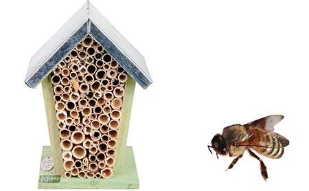 Abri pour abeilles en bois esschert design jardideco for Abeilles dans la maison