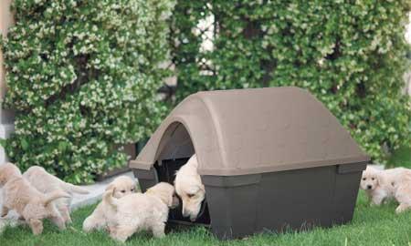 niche pour chien en plastique casa felice jardideco. Black Bedroom Furniture Sets. Home Design Ideas