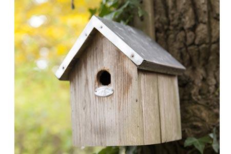 nichoir en bois certifi pour oiseaux m sange bleu jardideco. Black Bedroom Furniture Sets. Home Design Ideas
